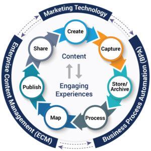 digital-content-management-service_chart